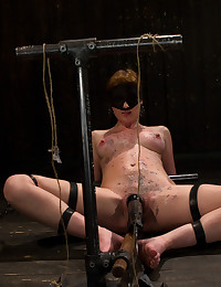 Strapped down and powerfully vibrated