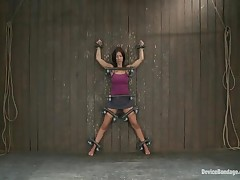 Halie James - Device Bondage