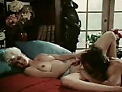 Looking for Mister Goodsex (Lois Ayres)
